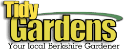 Tidy Gardens - garden maintenance and garden services