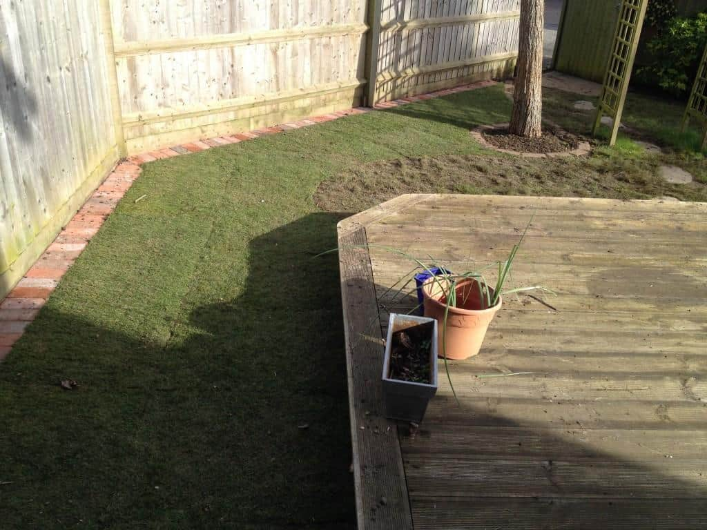Local Gardener For Garden Services And Maintenance Lawn Edging
