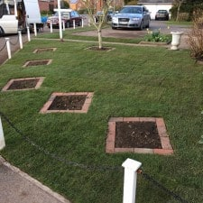 front yard landscaping AFTER
